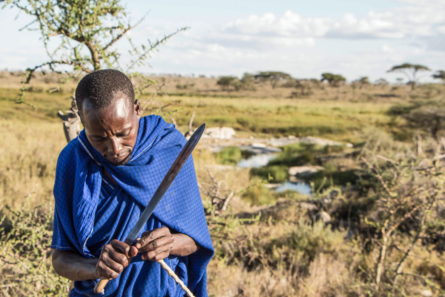 Trackers' unique talents are refined over generations wildlife tracking