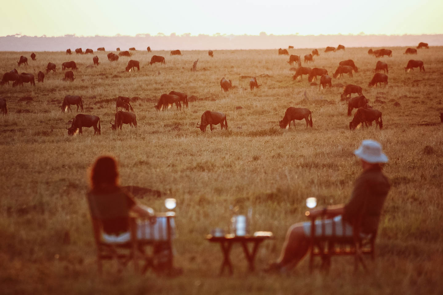 best Africa honeymoons elephant pepper camp activities sundowners wildebeest