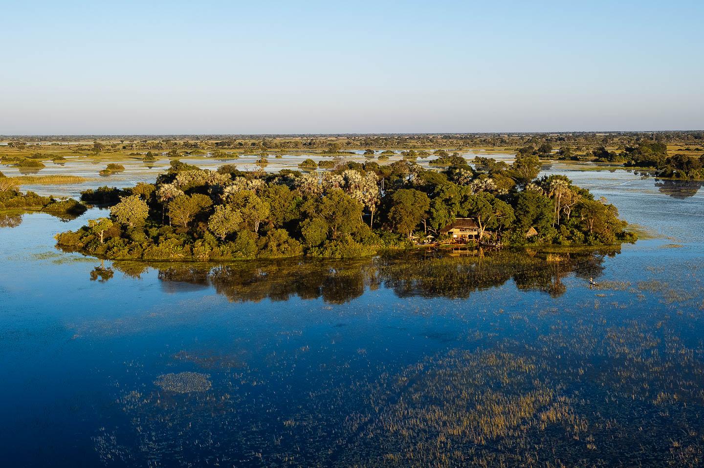 jacana-okavango-delta-botswana-timbuktu