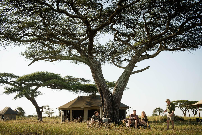 Great Wildebeest Migration namiri plains exterior lounge area serengeti safari camps
