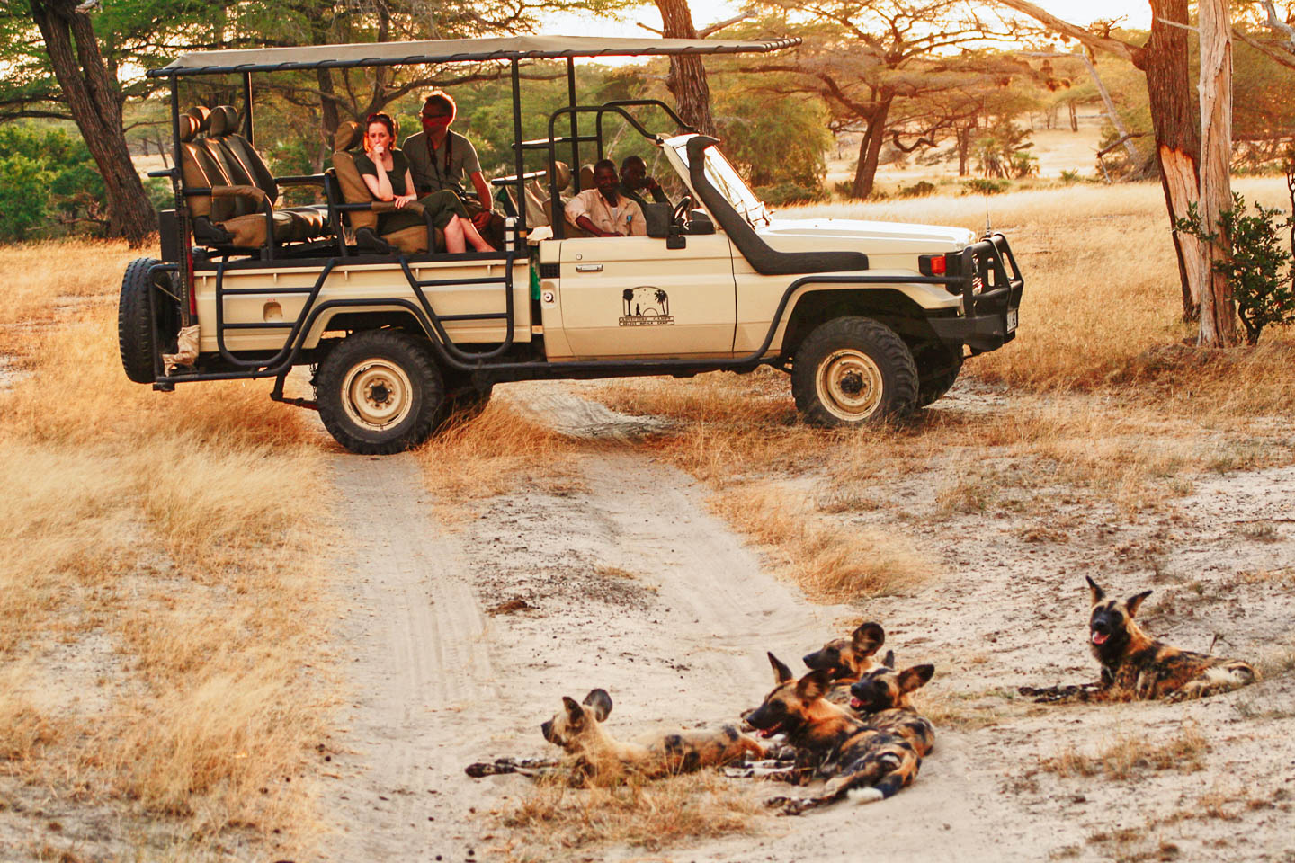 tanzania-selous-wildog-safari-gamedrive-timbuktu-travel east africa safaris