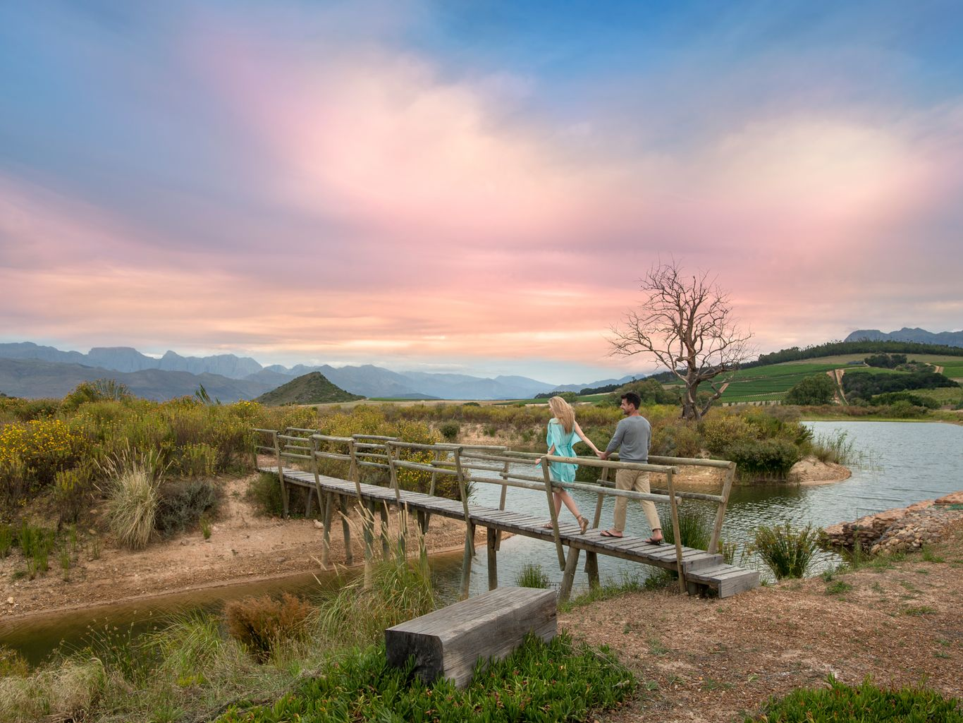 Cape Winelands Babylonstoren