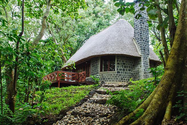 Gorilla Trekking Mikeno Lodge DRC
