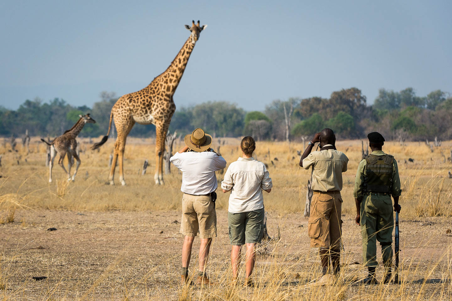zambia travel guide africa safari destinations