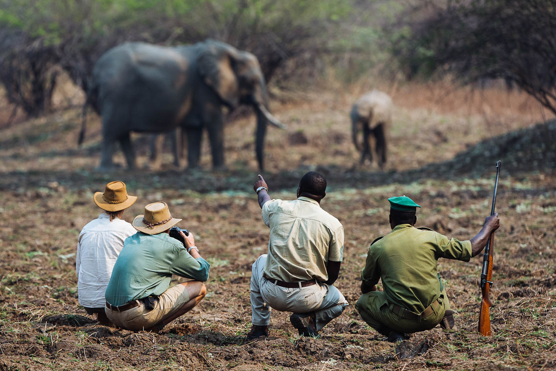 walking safari trip